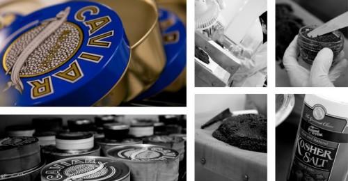 Mote Marine Caviar Harvesting