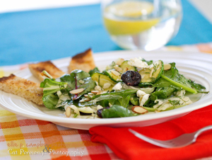 Lemon & Fennel/Anise Salad & Slush Recipes! – Sarasota ...