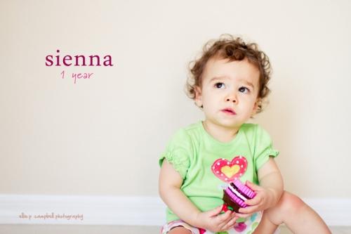 Sienna - 1 year